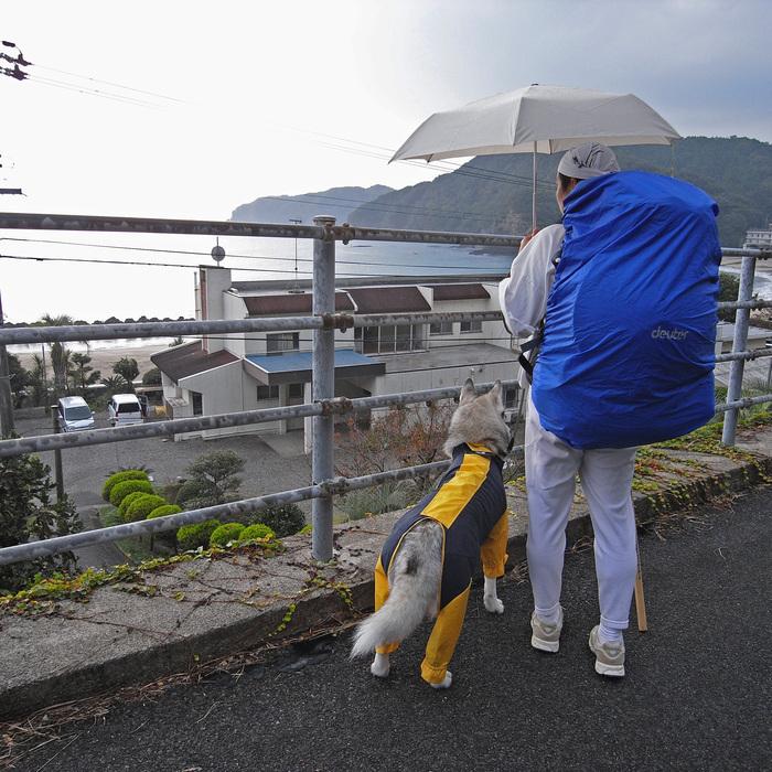 Memory of the second pilgrimage with husky HANA_c0049299_83809.jpg