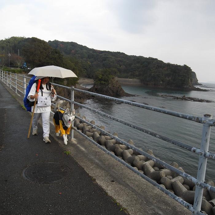 Memory of the second pilgrimage with husky HANA_c0049299_8383688.jpg