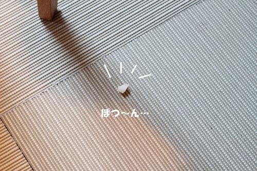 b0197418_13491287.jpg
