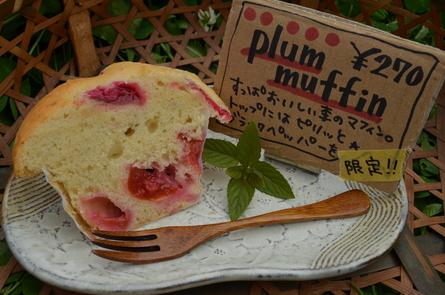 plum muffin!_b0207642_16361315.jpg