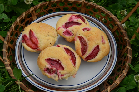 plum muffin!_b0207642_16372468.jpg