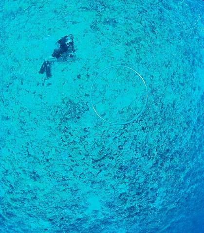 ハワイ・マウイ島、カメラウォーキング。_b0141773_864990.jpg
