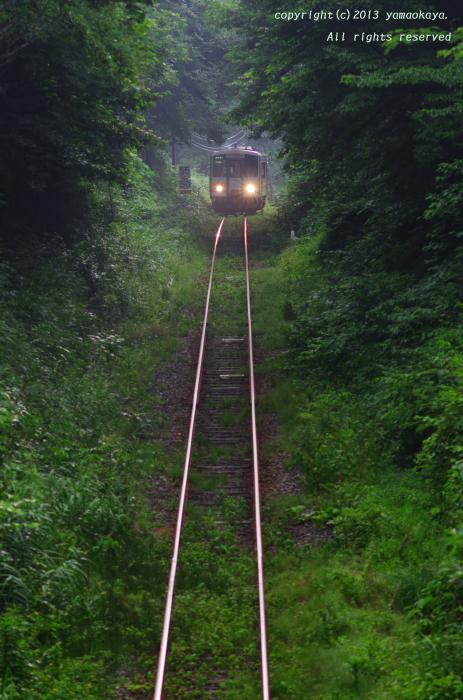 森を抜けて_d0309612_1943834.jpg