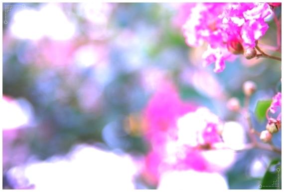 f0200114_14183097.jpg