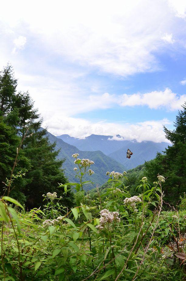 7月20~21日(晴れ)タイトル:信州遠征イントロ_f0105542_1861187.jpg