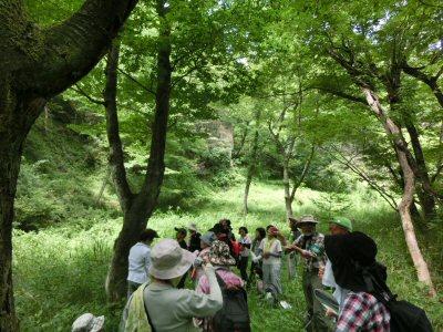 北杜24景フットパス「オオムラサキの里ウォーク」_f0019247_1549983.jpg