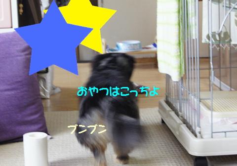 f0195891_16475922.jpg