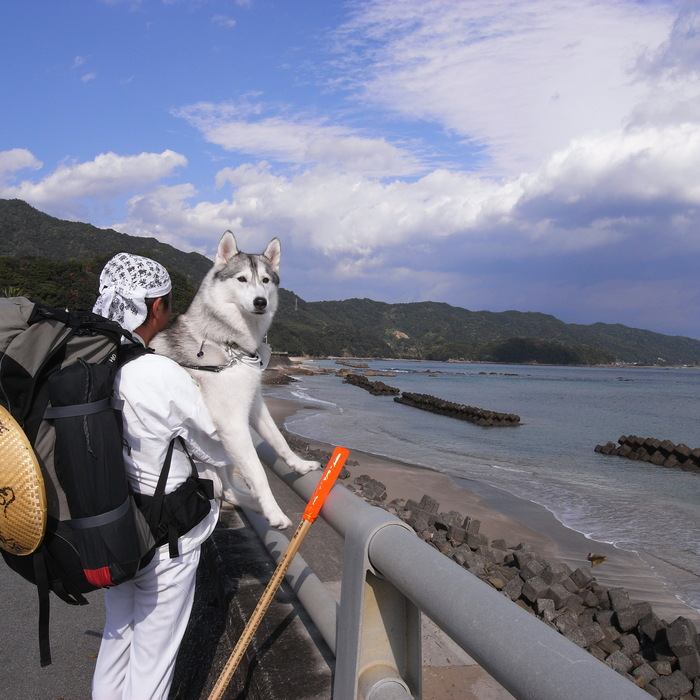 Memory of the second pilgrimage with husky HANA_c0049299_1025949.jpg