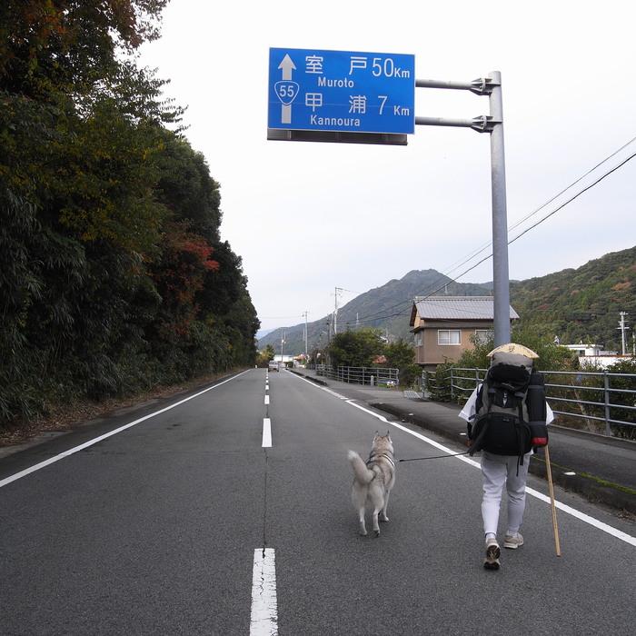 Memory of the second pilgrimage with husky HANA_c0049299_11584729.jpg