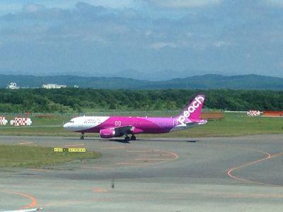 新千歳空港に行ってきた。_d0156358_2237585.jpg