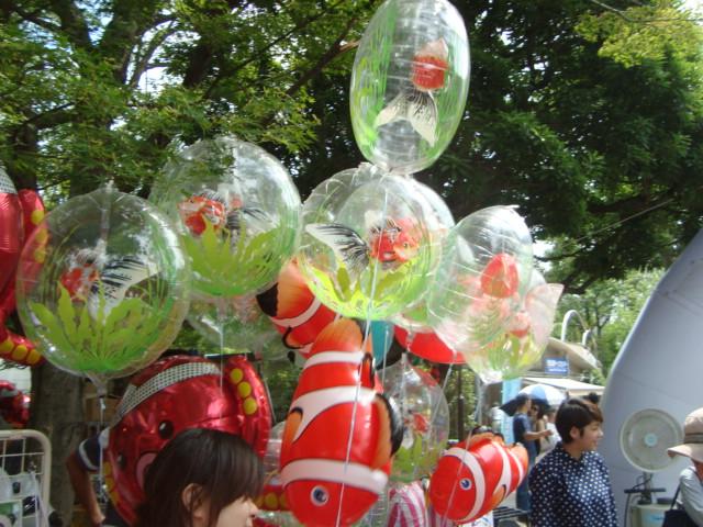 「江戸川区金魚まつり」へ行く。_f0232060_11211766.jpg