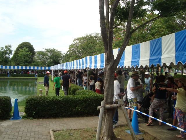 「江戸川区金魚まつり」へ行く。_f0232060_11222252.jpg