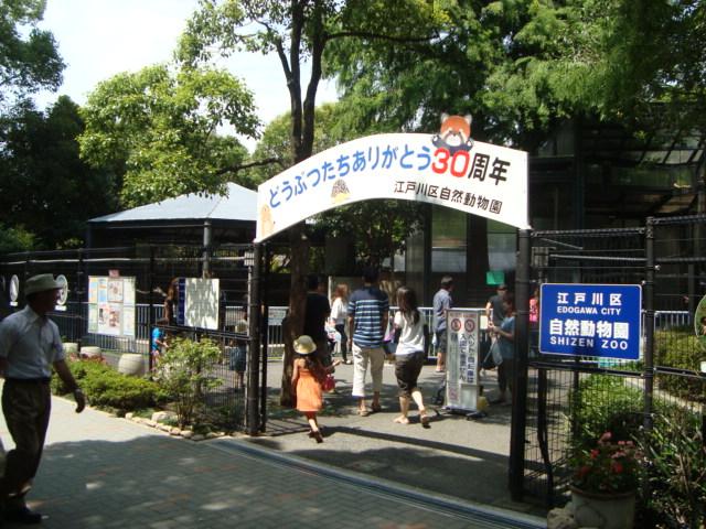 「江戸川区金魚まつり」へ行く。_f0232060_1125278.jpg