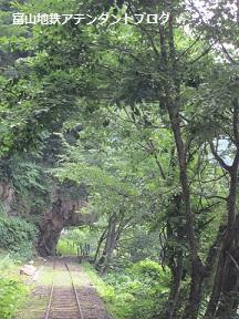 秘境の地!立山カルデラへ ~トロッコ編~_a0243562_13215940.jpg