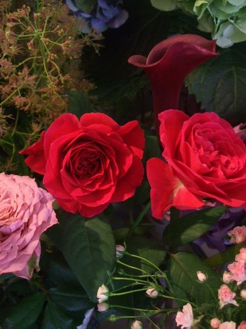 オークリーフ(青木園芸の紫陽花を使って・・)_f0049672_1405819.jpg