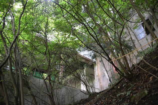 奥多摩ロープウェイ廃墟_e0171573_1215456.jpg