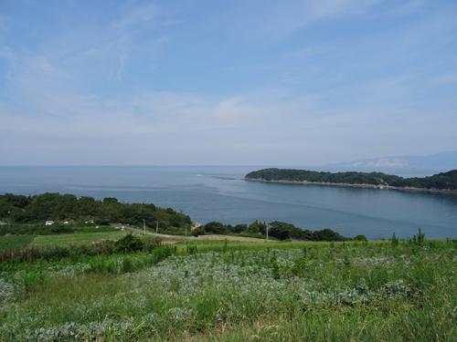 前島は、カボチャの収穫が終わりました!_e0173183_11205481.jpg