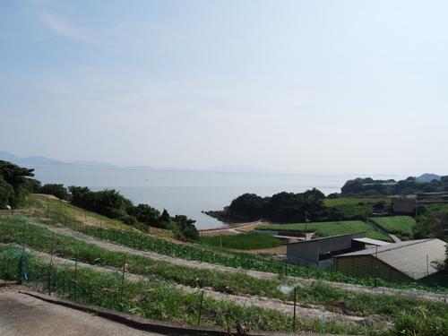 前島は、カボチャの収穫が終わりました!_e0173183_11211558.jpg
