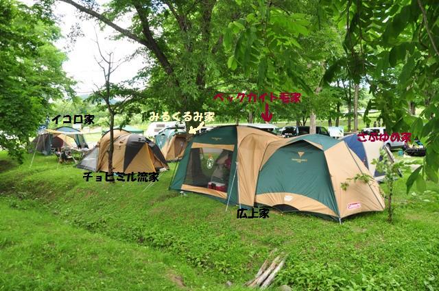 海の日わんわんキャンプ 沙流川オートキャンプ場_f0212597_22164362.jpg