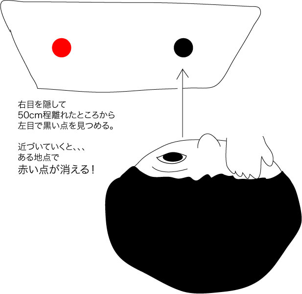 盲点_d0225198_1741363.jpg