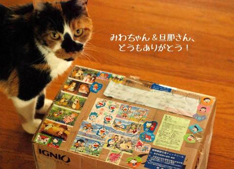 ラスカル、ふたたび!日本からの小包。_b0253205_6253997.jpg