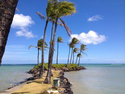 夏休みハワイ、終了〜!_d0285416_15471724.jpg