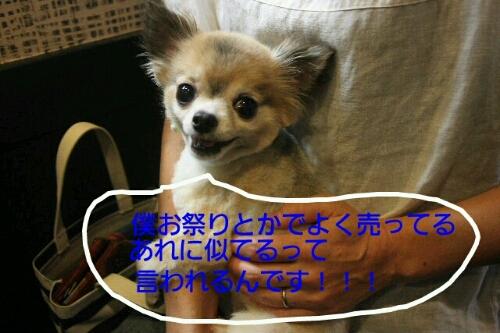 b0130018_104372.jpg