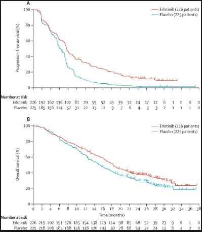 FASTACT-2試験:非小細胞肺癌のファーストラインに対してエルロチニブは上乗せ効果あり_e0156318_9572681.jpg