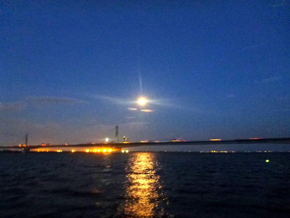 ウナギ船釣り 木曽川河口  2013年7月22日(月) _d0171823_21584650.jpg