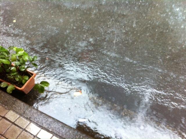 どしゃぶりの雨、雷、すごかったですねー。&7月24日(水)のランチメニュー_d0243849_2325020.jpg