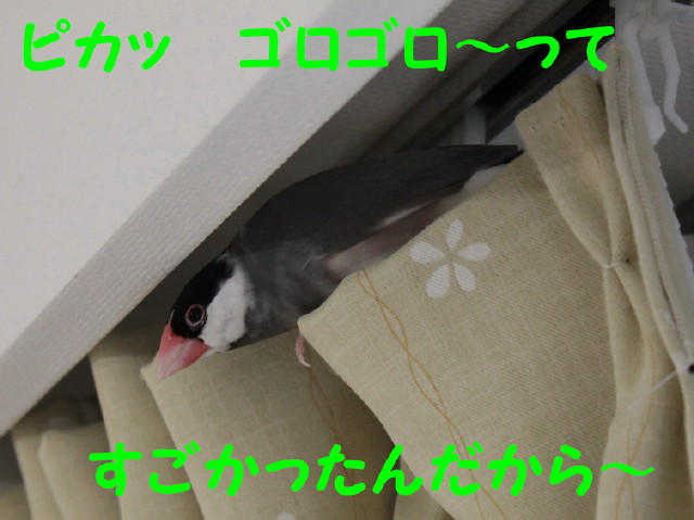 b0158061_22102220.jpg