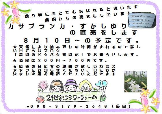 b0280161_6131553.jpg