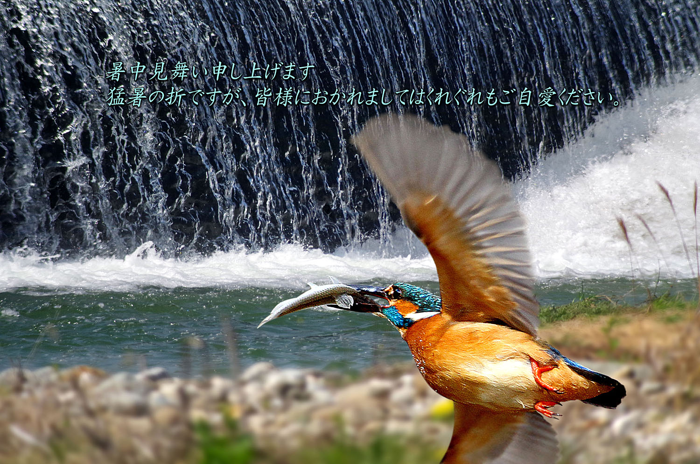 f0215767_14103466.jpg