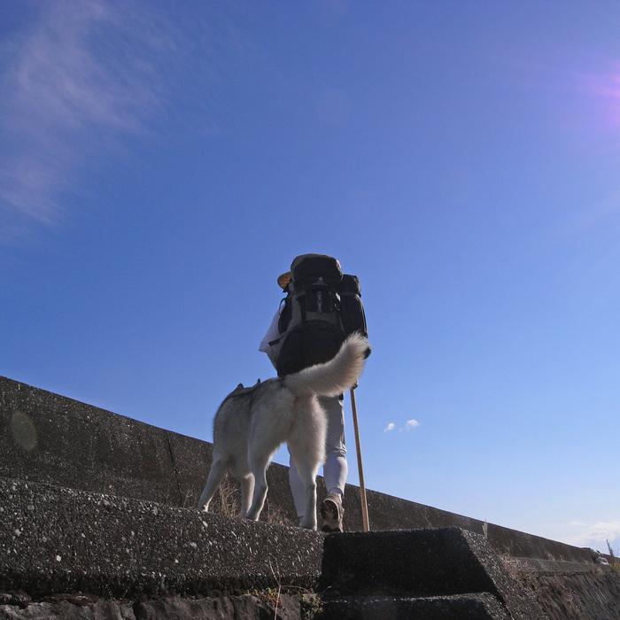 Memory of the second pilgrimage with husky HANA_c0049299_10131766.jpg