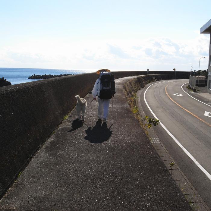 Memory of the second pilgrimage with husky HANA_c0049299_10183772.jpg