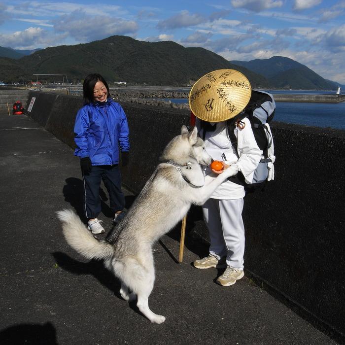 Memory of the second pilgrimage with husky HANA_c0049299_1021057.jpg