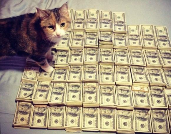 アメリカで人気が高まる「ヨガ」と「猫ちゃん」の異色コラボ記事_b0007805_5332017.jpg
