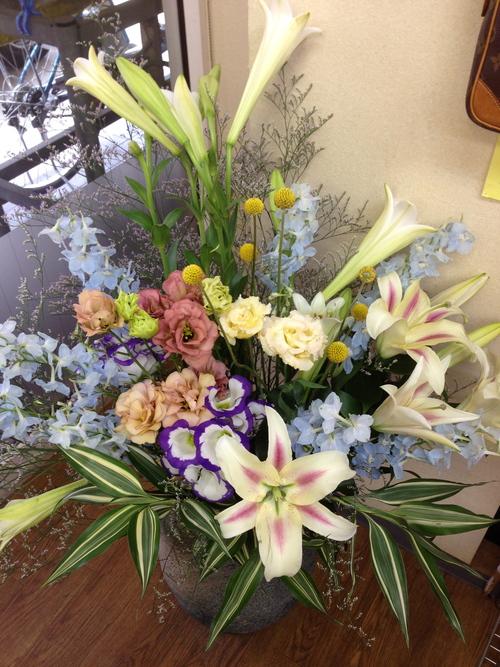 今週のお花とセール情報_a0200423_18411329.jpg