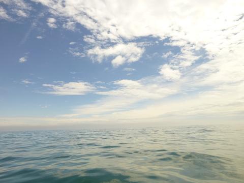 種差の海を満喫!ぐるっとクルージング_e0132433_8102372.jpg