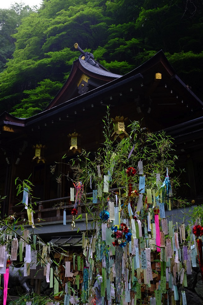 2013夏写真 貴船神社・七夕笹飾り 〜前編〜_f0152550_2210049.jpg