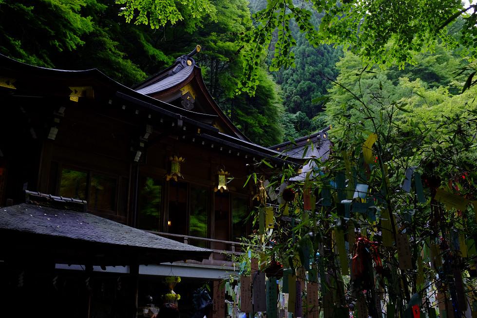 2013夏写真 貴船神社・七夕笹飾り 〜前編〜_f0152550_22101817.jpg