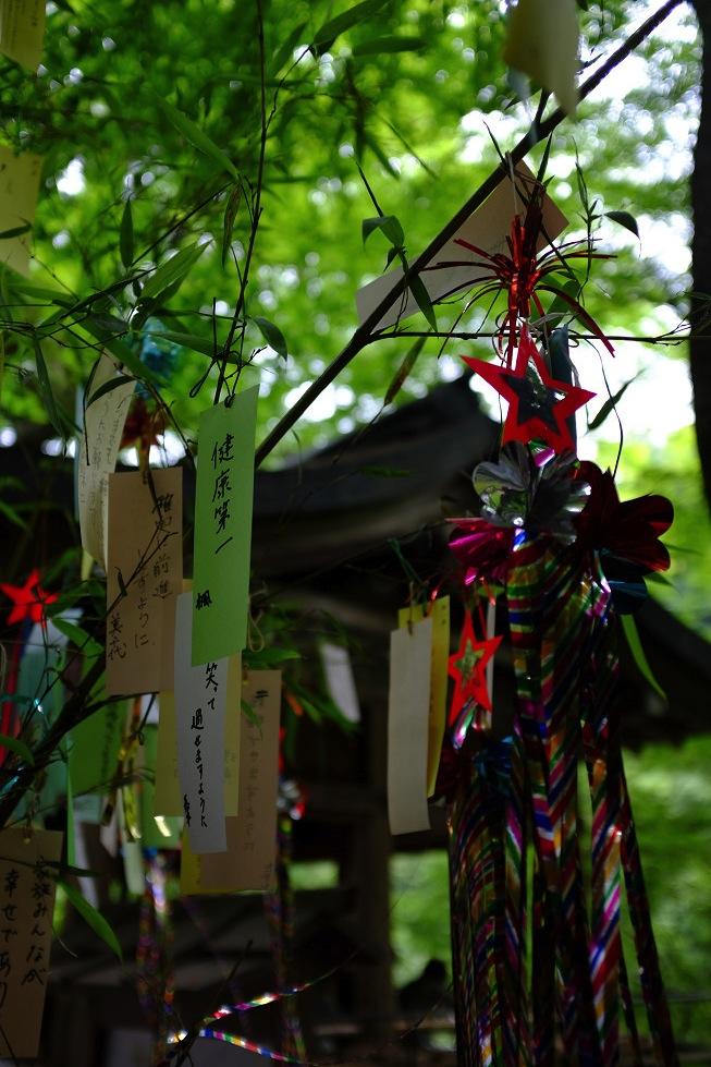 2013夏写真 貴船神社・七夕笹飾り 〜前編〜_f0152550_227568.jpg