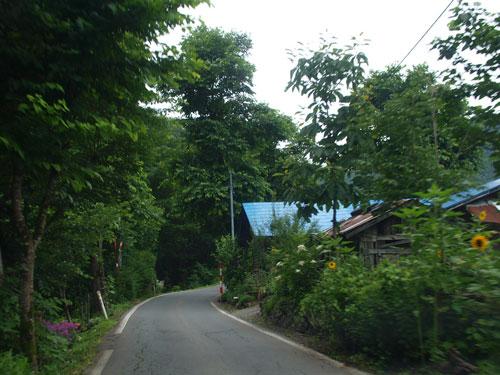 緑の家路_f0236291_514596.jpg