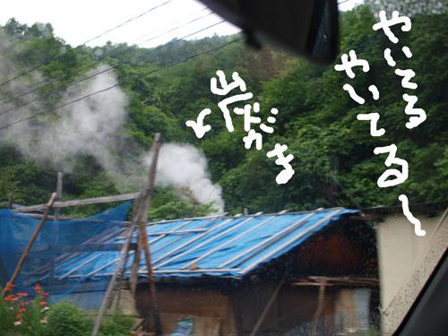 緑の家路_f0236291_524445.jpg