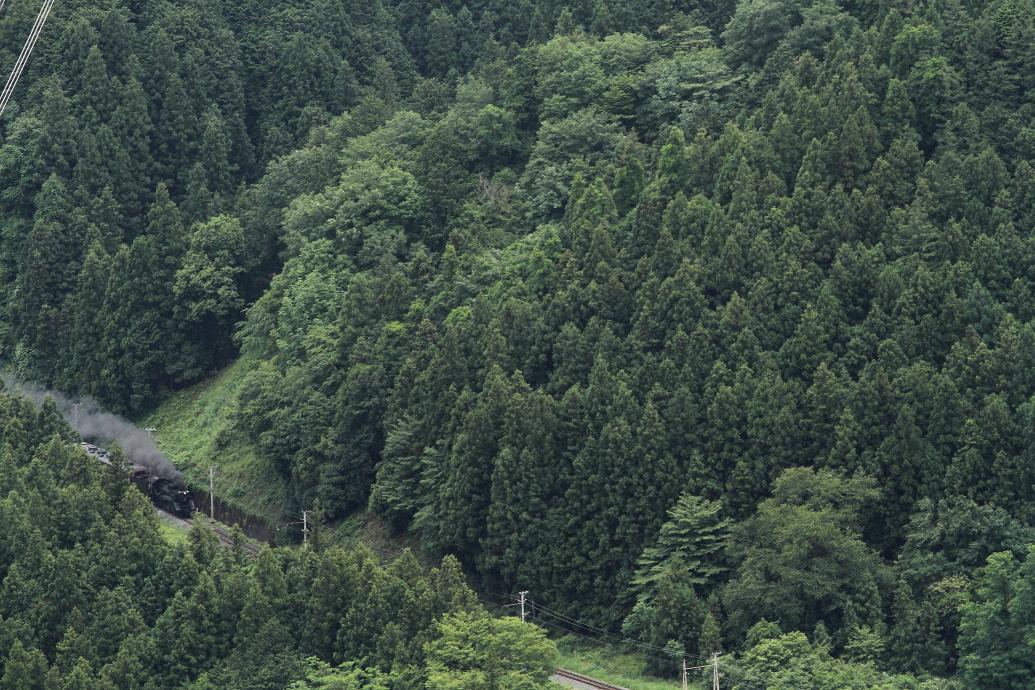 山の中に後藤デフが見えた - 2013年・秩父 -  _b0190710_744855.jpg
