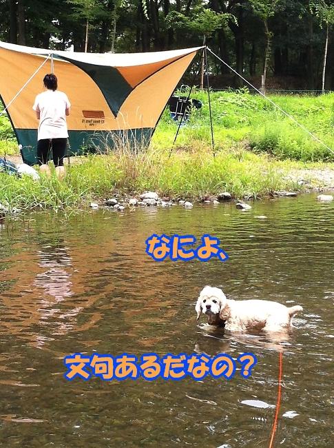 b0067012_027347.jpg