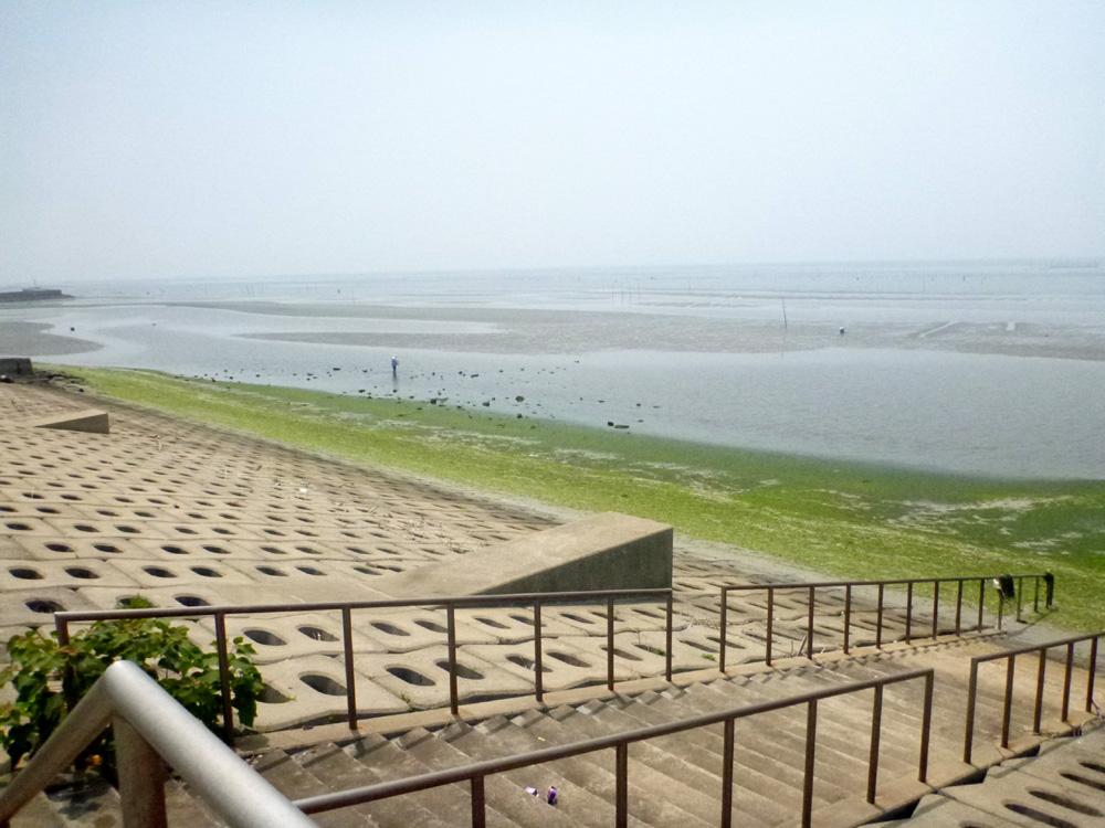 知多半島へ行って来ました。 2013年7月25日(木)。_d0171823_23434643.jpg