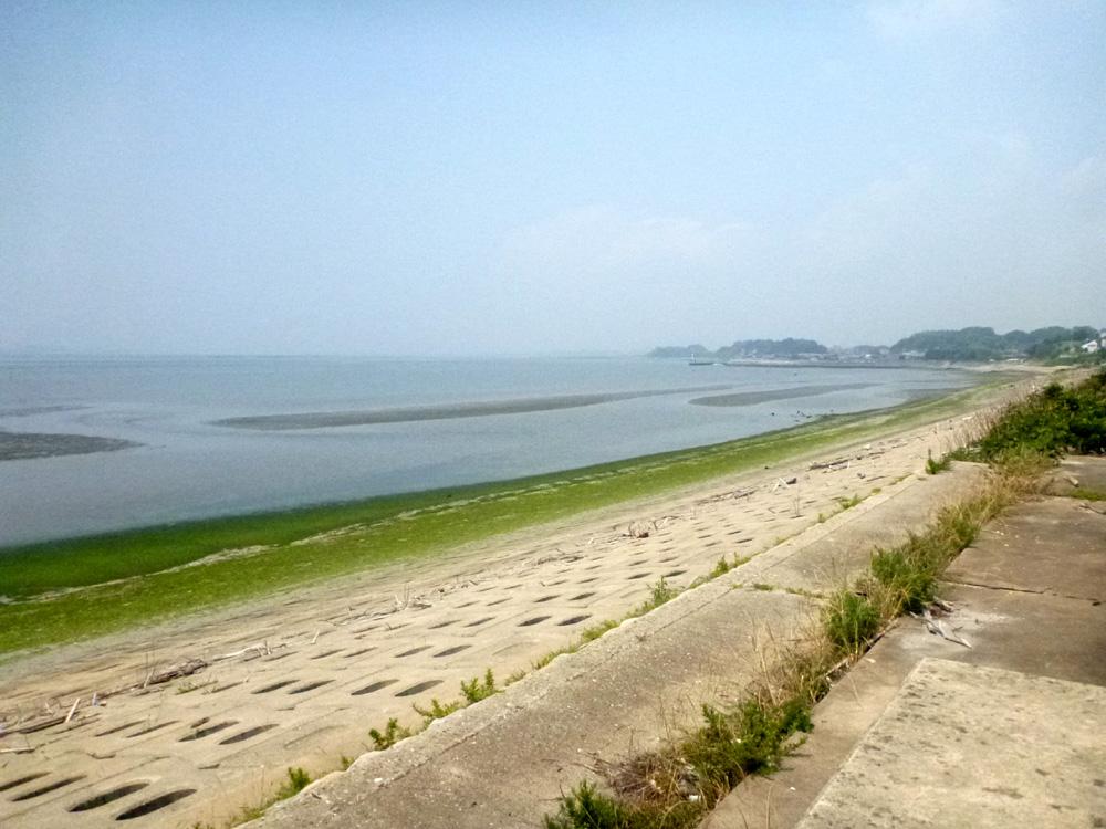 知多半島へ行って来ました。 2013年7月25日(木)。_d0171823_23435472.jpg