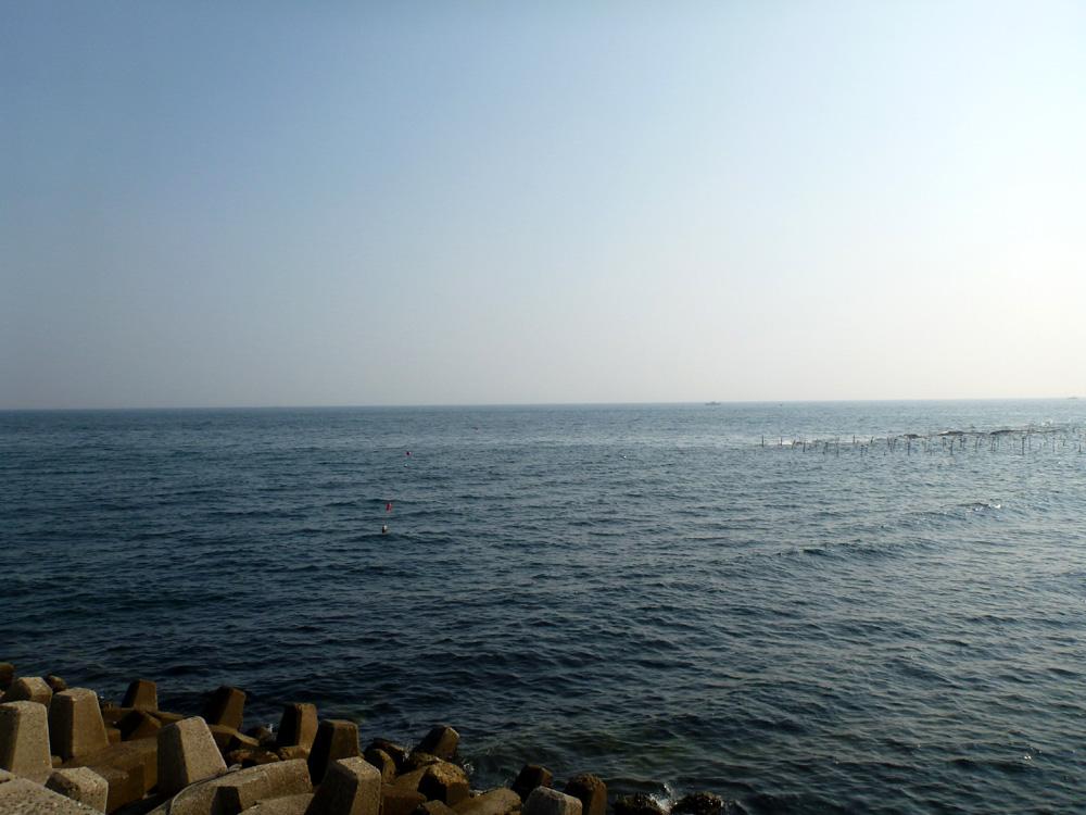 知多半島へ行って来ました。 2013年7月25日(木)。_d0171823_23483983.jpg