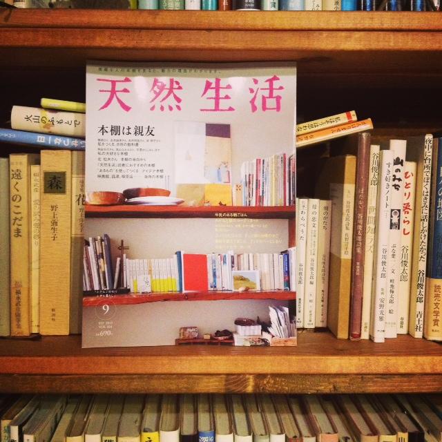 野ネズミの7周年と本棚。_d0028589_1515579.jpg
